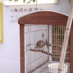 海辺の途中 - 入口階段横には幅1mほどの大きな鳥かごがあります。