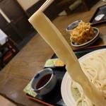 うどん 八州 - 料理写真:こんな感じ!