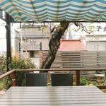 カキノキテラス - お庭に柿の木が1本。お店の良いメルクマールですね。