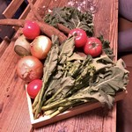 WE ARE THE FARM - 本日の野菜