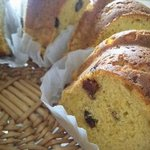 はつたもの - 料理写真:発酵ケーキ