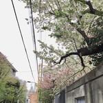 105863367 - 早稲田大学前の風景