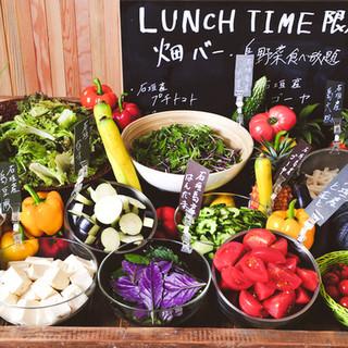 【ランチタイム限定!】朝取れ島野菜が時間無制限で食べ放題!!