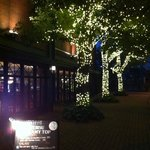 MLB Cafe Tokyo - 11月の外観