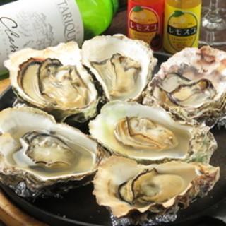 広島が誇る地酒の数々、白ワインは牡蠣との相性も抜群です◎