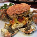10616227 - 上海蟹(雌)
