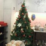 エチエンヌ - クリスマスツリー※撮影了承済み