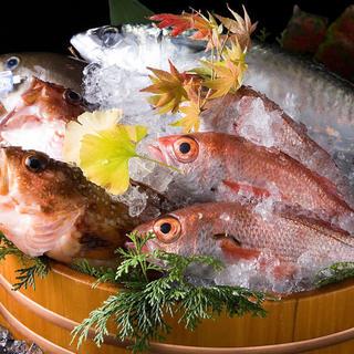 日本各地の鮮魚をお届け◎時季の逸品料理をお楽しみください
