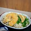 手打ちうどん 運ど運屋 - 料理写真:青ねぎとかぼちゃの天ぷらの冷やしたぬきうどん