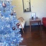 ハモナカフェ - クリスマスツリーがありました