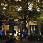アルテリーベ - ライトアップ開始(12月1日)