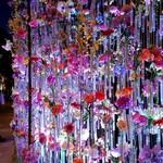 舞桜 - その他写真:本物の花が一本一本飾れてました