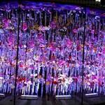 舞桜 - その他写真:ミッドタウン日比谷のイベント