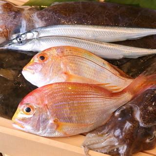 東海地方を中心に、各地の鮮魚を厳選しご提供しております。