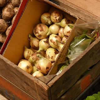 常連のお客様も絶賛!契約農家から仕入れるこだわり野菜