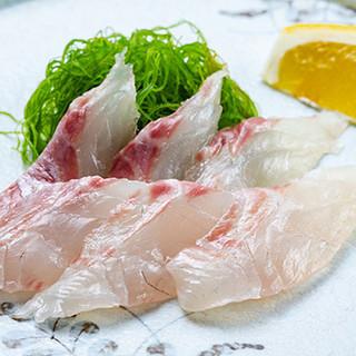 旬の鮮魚を多彩なバリエーションでお楽しみください!