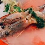 エビバル シモンズ - 天使の海老の炙りカルパッチョ