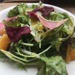 106629603 - 季節のグリーンサラダ