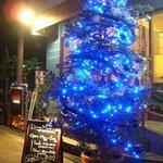 ミネット - 福島一のもみの木のクリスマスツリー