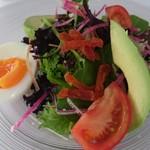 ペニーゾラ - 料理写真:綺麗なサラダ