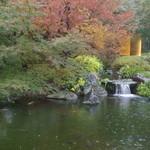 Shouwanomorikurumaya - ガラス越しの雨の庭園