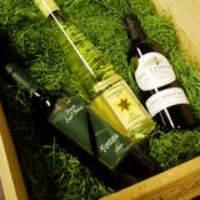 スタンダードブックストア - ワインが新しくなりましたっっ!!