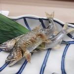 106959372 - 美しい焼き魚