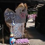 小西のパン - 三田花じゅうたん