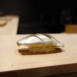 姫沙羅 - 小鰭
