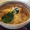つるつる庵十兵衛 - 料理写真:天ぷらうどん