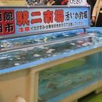 函館朝市 駅二市場 活いか釣り広場 -