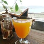 井上誠耕園 ファームズテーブル 忠左衛門 - 季節の果実の生搾りジュース(デコポン)