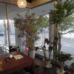cafe Kiara - 綺麗な観葉植物