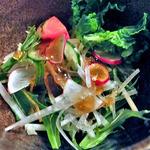 10740509 - 「丼とそばのセット」のサラダ(2011年12月)