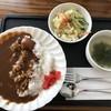 ジョイハウス - 料理写真:インド風チキンカレー¥650