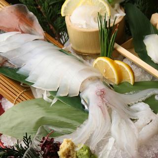 【九州鮮魚】活いか・きびなご等新鮮な海の幸をご賞味ください。