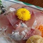 磯料理 魚伝 -