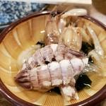 平平平平 - シャコ酢
