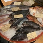 SAVOY - 本日のお魚素材