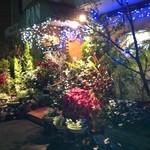 PAN - 入り口の様子・・・植物がいっぱいです