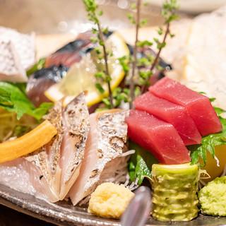 平塚漁港から直送される朝どれ鮮魚の刺身
