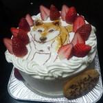 10785469 - 5号 ケーキ