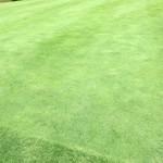 タカガワ西徳島ゴルフ倶楽部 - パター練習場