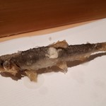 天てんぷら うち津 - 琵琶湖の稚鮎 ふっくらと
