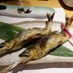 柳家錦 - 大内山川の釣り鮎