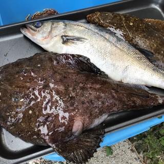 荒浜漁港直送の新鮮な魚介を…。素材を活かしたフレンチ料理を◎