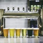 麦ノ音 - ドリンク写真:話題の国産ブルワリー直送の日替わりクラフトビールが6タップ!