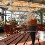 カフェ ガーデン - 料理写真: