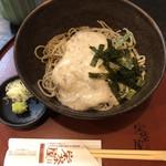 栄茶屋 - 薬味はネギと山葵