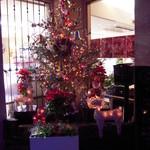 シェ・アオタニ - 入り口横のクリスマスツリー‼